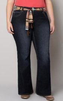 Plus Size Jeans Petite Ye Jean