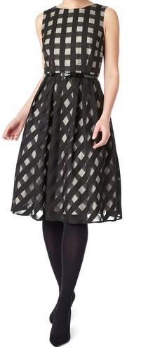 Precis Petite Flare Dress